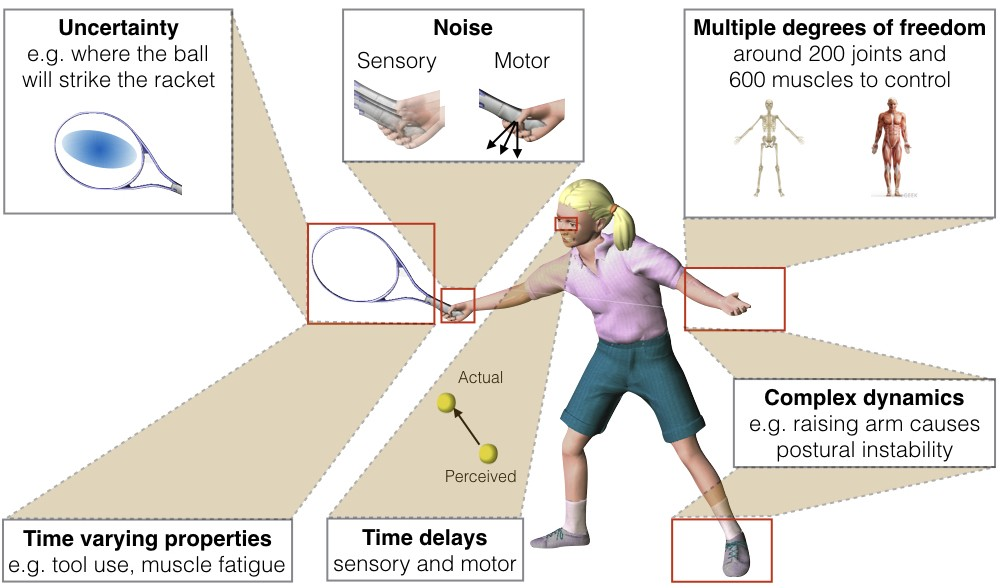 The problems in motor control includes uncertainty, noise, multiple degrees of freedom, complex dynamics, time delays and time varying properties such as muscle fatigue.