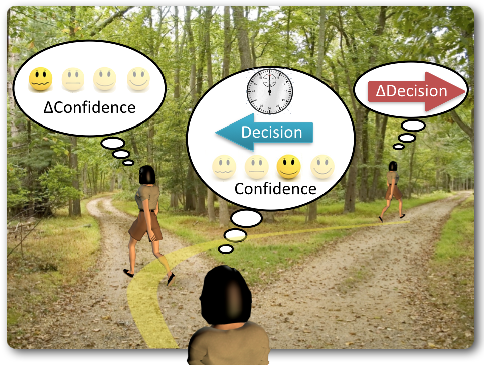 Decision of which of two routes to walk along takes time and is accompanied by a level of confidence in the decision which can change over time and lead to a change of decision.